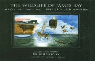The Wildlife of James Bay